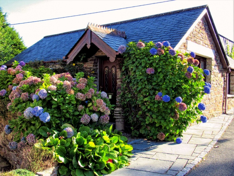 Wildflower Holiday Cottage in Bloom near Newquay