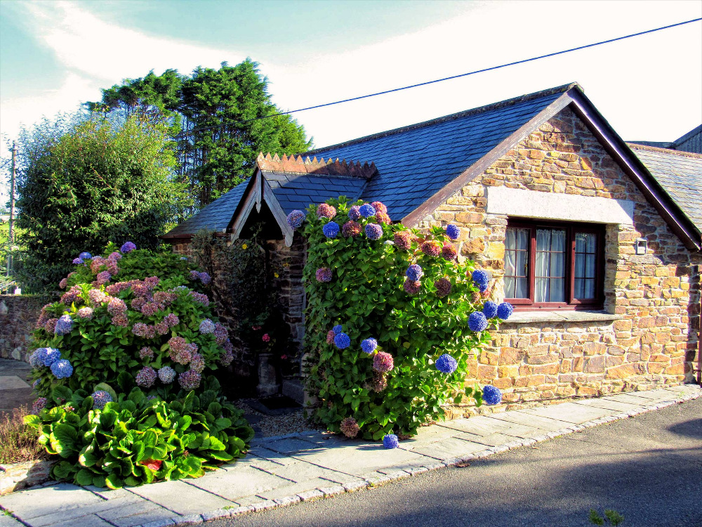 Wild Flower Holiday Cottage Newquay Cornwall