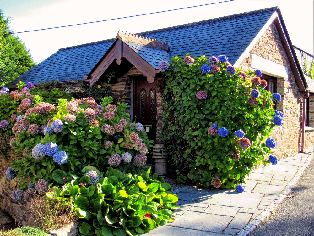 Wild Flower Cottage Hendra Paul Holiday Cottages Newquay